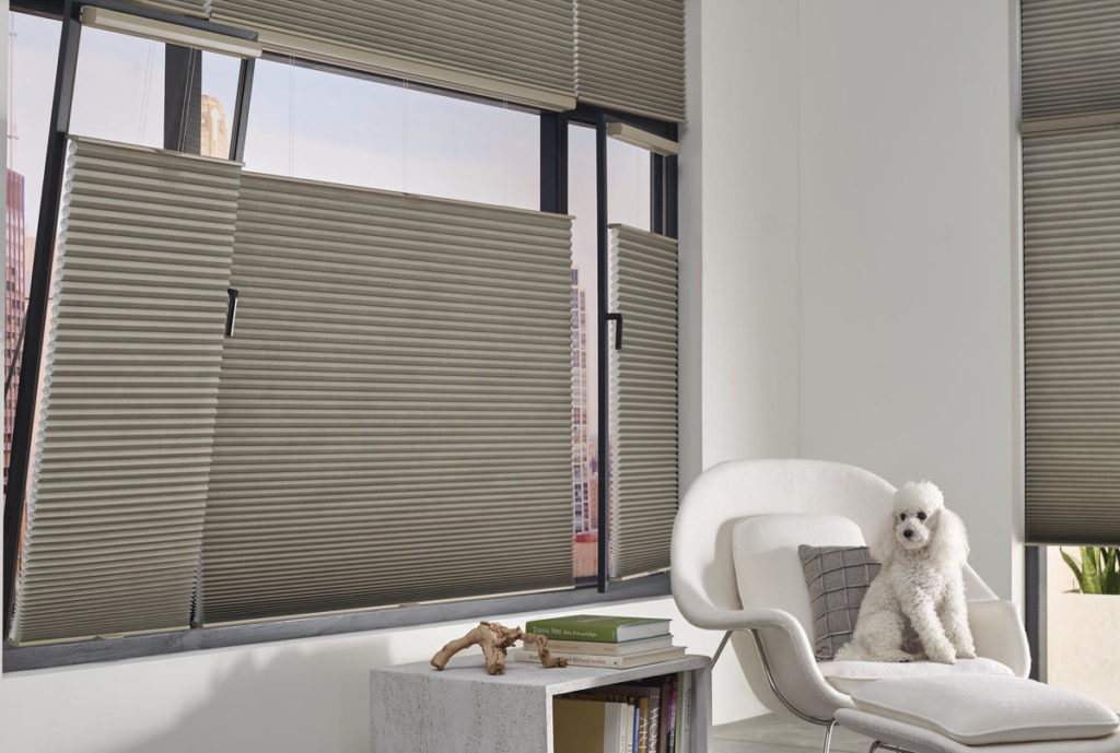 Hunter Douglas Honeycomb shades, Duette®, Elan color